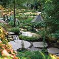 Le Jardin des fontaines... 25 saisons pétrifiantes !